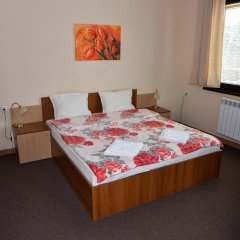 Hotel Bistrica комната для гостей фото 4