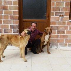 Отель Varlibas Uyku Sarayi с домашними животными