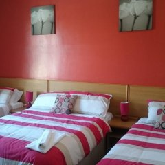 Tulip Hotel 3* Стандартный номер с 2 отдельными кроватями фото 2
