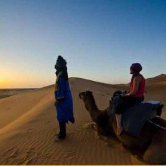 Отель Bivouac Morocco Safari Tours Марокко, Мерзуга - отзывы, цены и фото номеров - забронировать отель Bivouac Morocco Safari Tours онлайн приотельная территория фото 2