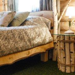 Hotel LogHouse Стандартный номер двуспальная кровать фото 32