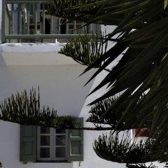 Отель Olia Hotel Греция, Турлос - 1 отзыв об отеле, цены и фото номеров - забронировать отель Olia Hotel онлайн фото 8
