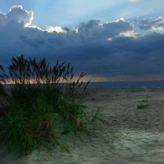 Alve Hotel пляж