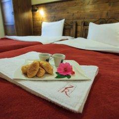 Zlaten Rozhen Hotel 3* Стандартный номер фото 3