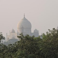 Отель Pearl Of Taj-Homestay фото 5