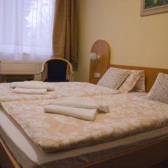 Hotel Zátiší Františkovy Lázně 3* Стандартный номер фото 5