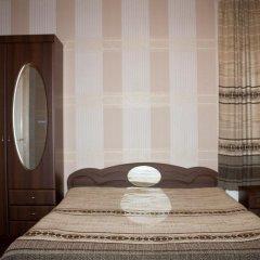Гостиница Vesela Bdzhilka Номер Комфорт разные типы кроватей фото 3