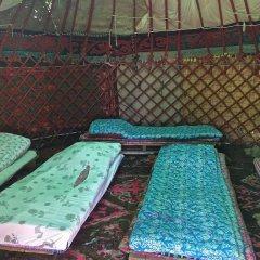 Отель Turkestan Yurt Camp Кыргызстан, Каракол - отзывы, цены и фото номеров - забронировать отель Turkestan Yurt Camp онлайн бассейн
