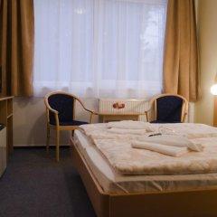 Hotel Zátiší Františkovy Lázně 3* Стандартный номер фото 8