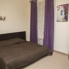 Мини-Отель Комфитель Александрия 3* Стандартный номер с разными типами кроватей фото 13