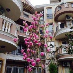 Отель Mellia Residence Болгария, Равда - отзывы, цены и фото номеров - забронировать отель Mellia Residence онлайн фото 2