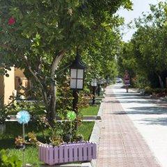 Hotel Ozlem Garden 3* Бунгало с различными типами кроватей фото 4