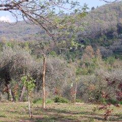 Отель Casa vacanze gli ulivi Италия, Боргомаро - отзывы, цены и фото номеров - забронировать отель Casa vacanze gli ulivi онлайн фото 8
