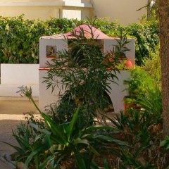 Отель Katerina Apartments Греция, Калимнос - отзывы, цены и фото номеров - забронировать отель Katerina Apartments онлайн фото 2