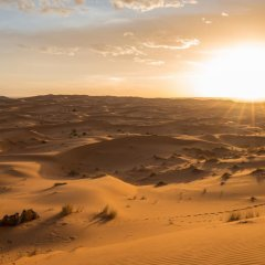 Отель Desert Luxury Camp Марокко, Мерзуга - отзывы, цены и фото номеров - забронировать отель Desert Luxury Camp онлайн пляж фото 2