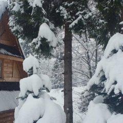 Отель Camping Harenda Pokoje Gościnne i Domki Закопане фото 4