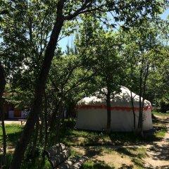 Отель Turkestan Yurt Camp Кыргызстан, Каракол - отзывы, цены и фото номеров - забронировать отель Turkestan Yurt Camp онлайн фото 3