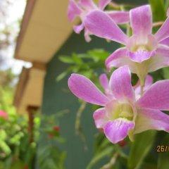 Hotel Ceylon Heritage фото 7