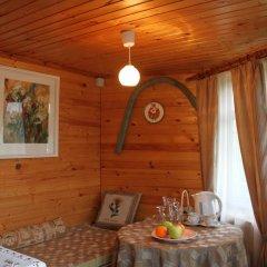 Русско-французский отель Частный Визит комната для гостей фото 3