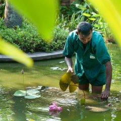 Отель Reef Villa and Spa Шри-Ланка, Ваддува - отзывы, цены и фото номеров - забронировать отель Reef Villa and Spa онлайн приотельная территория фото 2