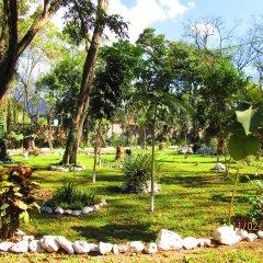 Отель El Bosque Hotel Гондурас, Копан-Руинас - отзывы, цены и фото номеров - забронировать отель El Bosque Hotel онлайн фото 5
