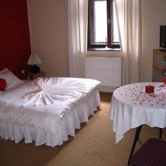 Hotel Oldrichuv Dub Стандартный номер с различными типами кроватей фото 3