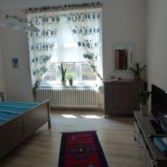 Отель Muna Apartments - Iris Чехия, Карловы Вары - отзывы, цены и фото номеров - забронировать отель Muna Apartments - Iris онлайн комната для гостей фото 4