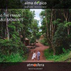 Отель Alma do Pico Португалия, Мадалена - отзывы, цены и фото номеров - забронировать отель Alma do Pico онлайн фото 2