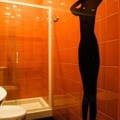 Мини-отель Краски 3* Номер Делюкс с разными типами кроватей фото 3