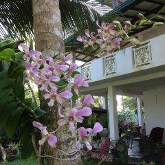 Отель Karl Holiday Bungalow Шри-Ланка, Калутара - отзывы, цены и фото номеров - забронировать отель Karl Holiday Bungalow онлайн фото 3
