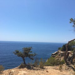Отель AzuLine Club Cala Martina Ibiza - All Inclusive пляж фото 2