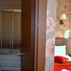 Ares Hotel 3* Стандартный номер с различными типами кроватей фото 4