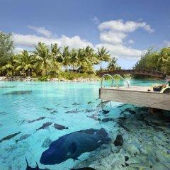 Отель The St Regis Bora Bora Resort бассейн фото 8