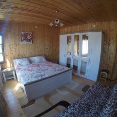 Отель Alex Guest House Номер Комфорт с различными типами кроватей