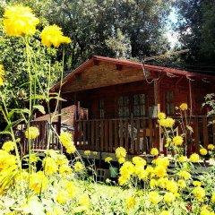 Отель Country Club Primi Faggi Санто-Стефано-ин-Аспромонте фото 12