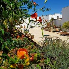 Отель B&B Masseria San Dana Гальяно дель Капо фото 17