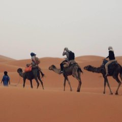 Отель Camel Trekking Company Марокко, Мерзуга - отзывы, цены и фото номеров - забронировать отель Camel Trekking Company онлайн спортивное сооружение
