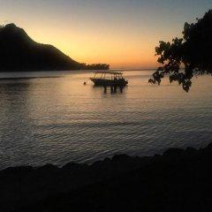 Отель Villa Ava Французская Полинезия, Муреа - отзывы, цены и фото номеров - забронировать отель Villa Ava онлайн приотельная территория фото 2