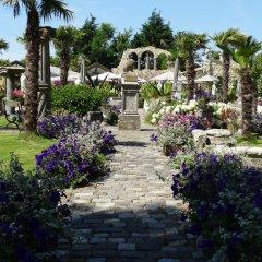 Отель Paradijs Eiland Нидерланды, Хазерсвауде-Рейндейк - отзывы, цены и фото номеров - забронировать отель Paradijs Eiland онлайн фото 6