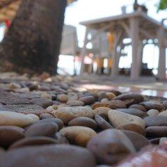 Отель Samui Sense Beach Resort питание фото 2