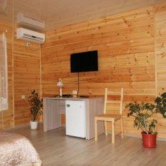 Гостиница Guest house Pine Forest удобства в номере