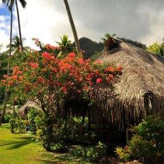 Отель Hibiscus Французская Полинезия, Муреа - отзывы, цены и фото номеров - забронировать отель Hibiscus онлайн фото 6