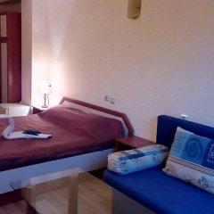Отель Guest House Planinski Zdravets комната для гостей фото 4