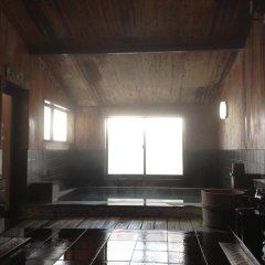 Отель Hakuba Alpine Hotel Япония, Хакуба - отзывы, цены и фото номеров - забронировать отель Hakuba Alpine Hotel онлайн бассейн фото 3