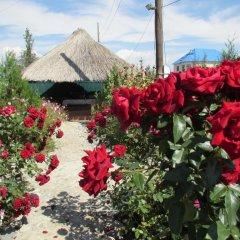 Отель Happy Nomads Yurt Camp Кыргызстан, Каракол - отзывы, цены и фото номеров - забронировать отель Happy Nomads Yurt Camp онлайн фото 13