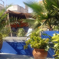 Отель Bayt Alice Марокко, Танжер - отзывы, цены и фото номеров - забронировать отель Bayt Alice онлайн бассейн