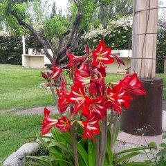 Отель Cabañas El Eden Сан-Рафаэль фото 5