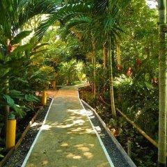 Отель Bay View Eco Resort & Spa фото 11