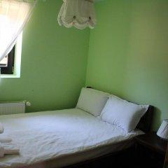 Отель Kutsinska House Чепеларе комната для гостей фото 5