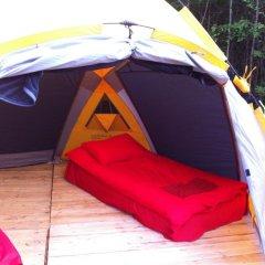 Гостиница Farm Camping Nikola Lenivets в Калуге отзывы, цены и фото номеров - забронировать гостиницу Farm Camping Nikola Lenivets онлайн Калуга бассейн